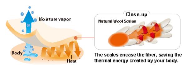 merino skins sweat absorption