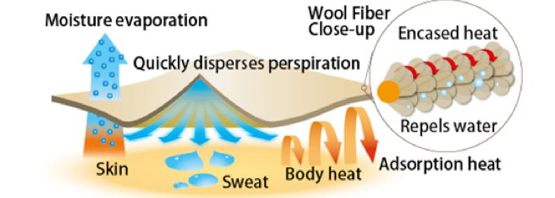 merino skins dispersing perspiration
